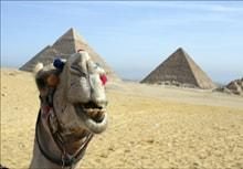 Скачать Игру Про Египет - фото 11
